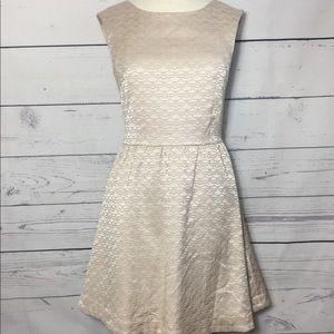 H&M Dress A-Line